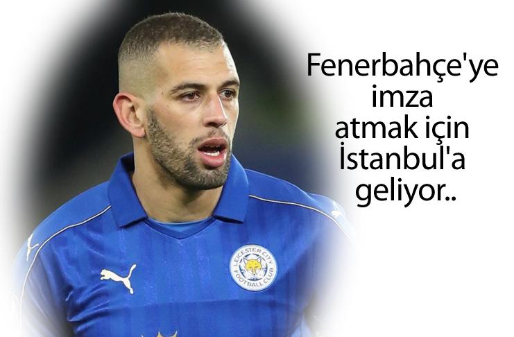 Fenerbahçe yeni transferine kavuşuyor